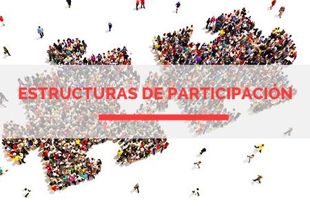ESTRUCTURAS de Participación